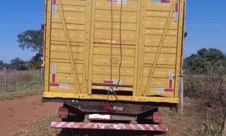 Os 11 animais foram transportados em caminhão que teria apresentado problemas mecânico(foto: PMMG/Divulgação)